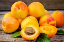 Aprikosenkernöl und andere haarprodukte